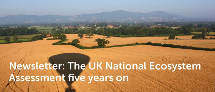 The UK National Ecosystem Assessment five years on Newsletter