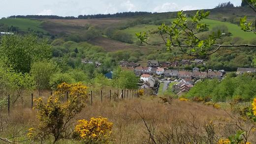 View of the town of Maesteg from the area where new woodland will be created.