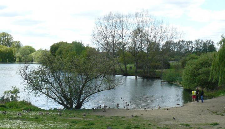 View of one of the lakes to be restored. Credit: Thames Rivers Trust