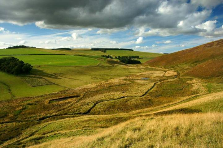 Typical upland valley scene (Credit: Scottish Borders Land Use Pilot)